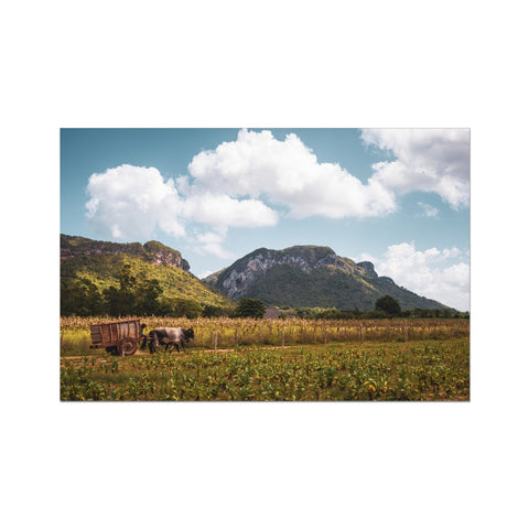 Cuba Original Back Country Photo Art Print
