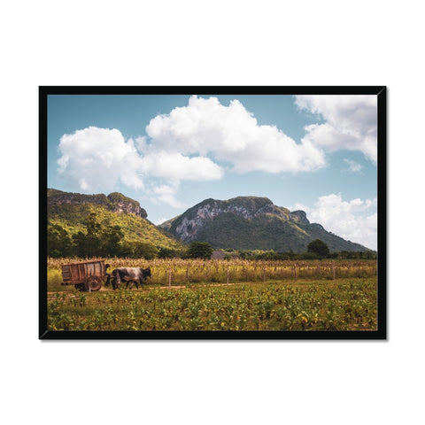 Cuba Original Back Country Framed Print