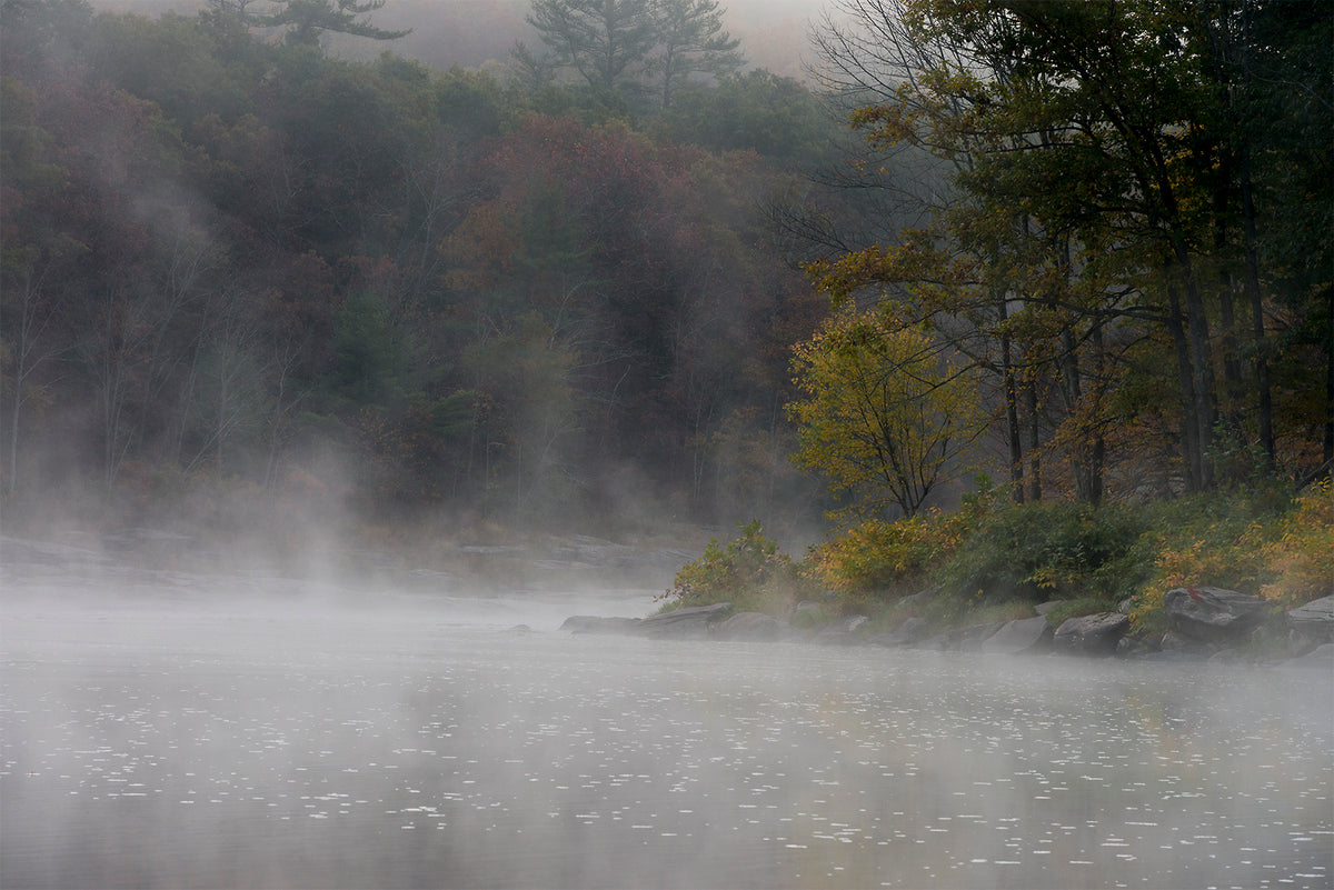 Fog on the Delaware, Sullivan County, NY