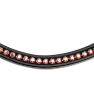 "Load image into Gallery viewer, Waldhausen Bridle ""Ruby"""