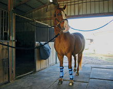 Load image into Gallery viewer, Equi Cool Down Leg Wraps