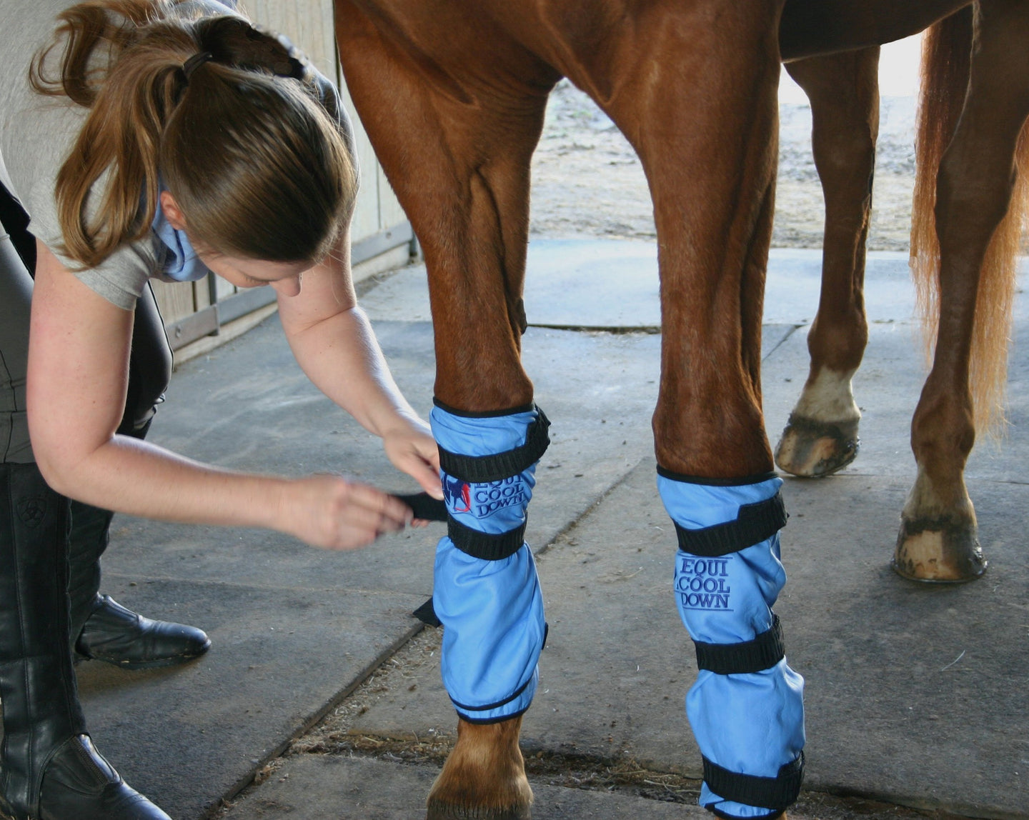 Equi Cool Down Leg Wraps