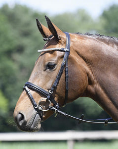 "Busse Bridle Soft ""Crystal"""