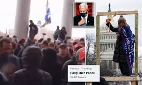 Hang Mike Pence, Capitol Riot, the fat lady