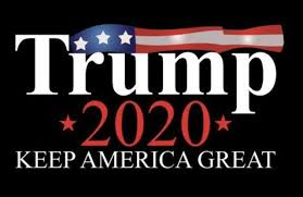 Make America Great, 2020 election, Donald Trump, Greatness