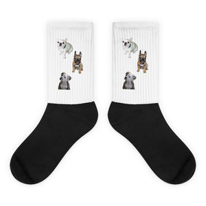 PUPPIES Socks