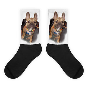 FREUD IN-THE-BAG SOCKS