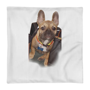 FREUD IN-THE-BAG Square Pillow