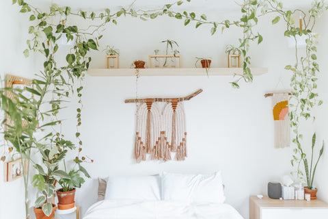 boho chic design bedroom with hanging plants and macrame