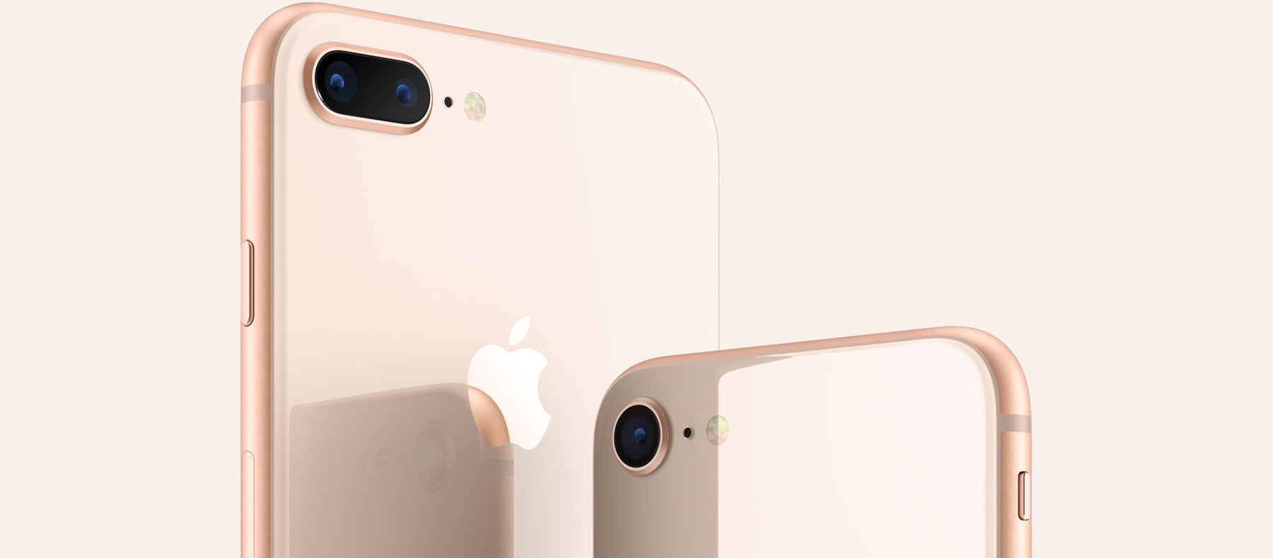 Iphone 8 Amp Iphone 8 Plus Cases Covers Screen Protectors