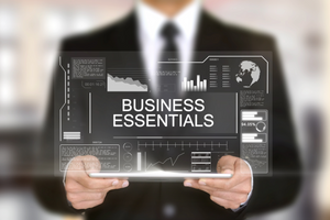 Business Essentials Honors