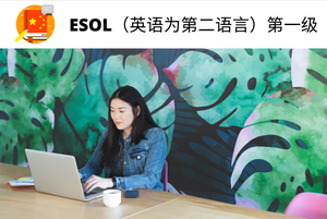 ESOL (English For Speakers of Other Languages) Level 1