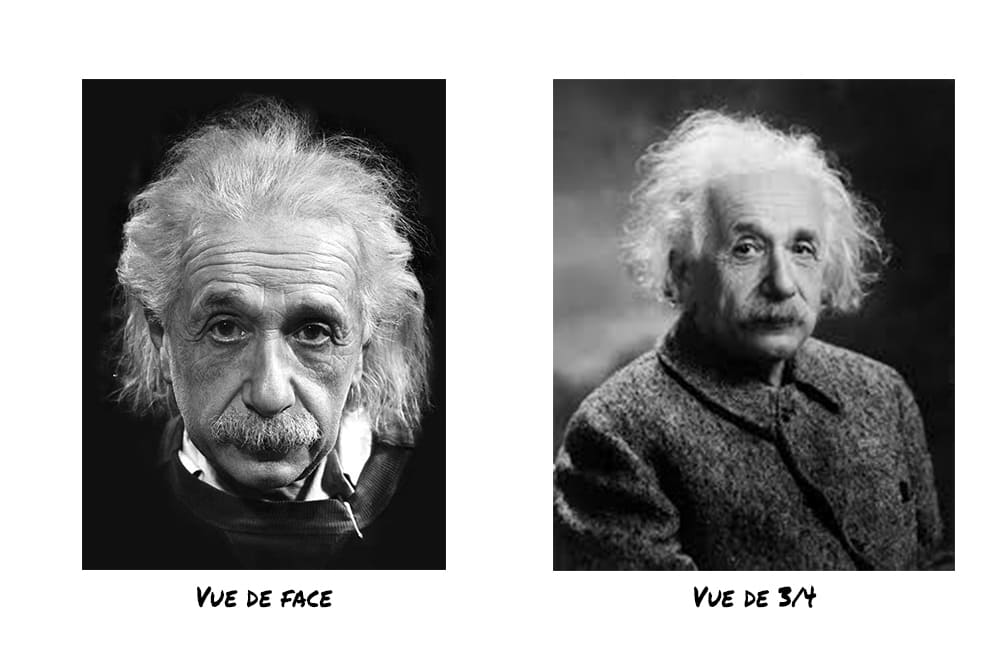 Photo de Einstein de face et en vue ¾.