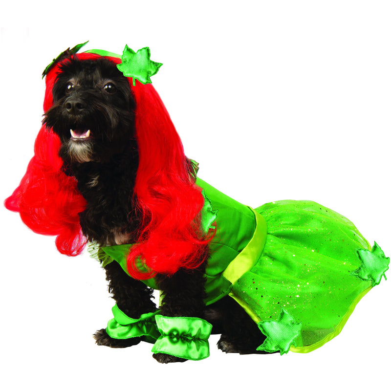 Poison Ivy Classic DC Comics Pet Costume - kostumed