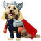 Thor Walking Pet Costume - kostumed