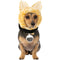 Goose Captain Marvel Pet Costume Kit - kostumed