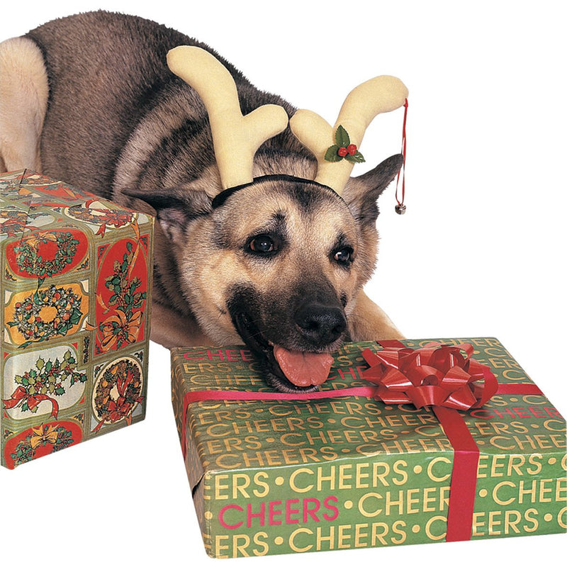 Reindeer Antlers Pet Christmas Costume - kostumed