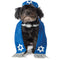 Yarmulke and Tallis Pet Costume - kostumed