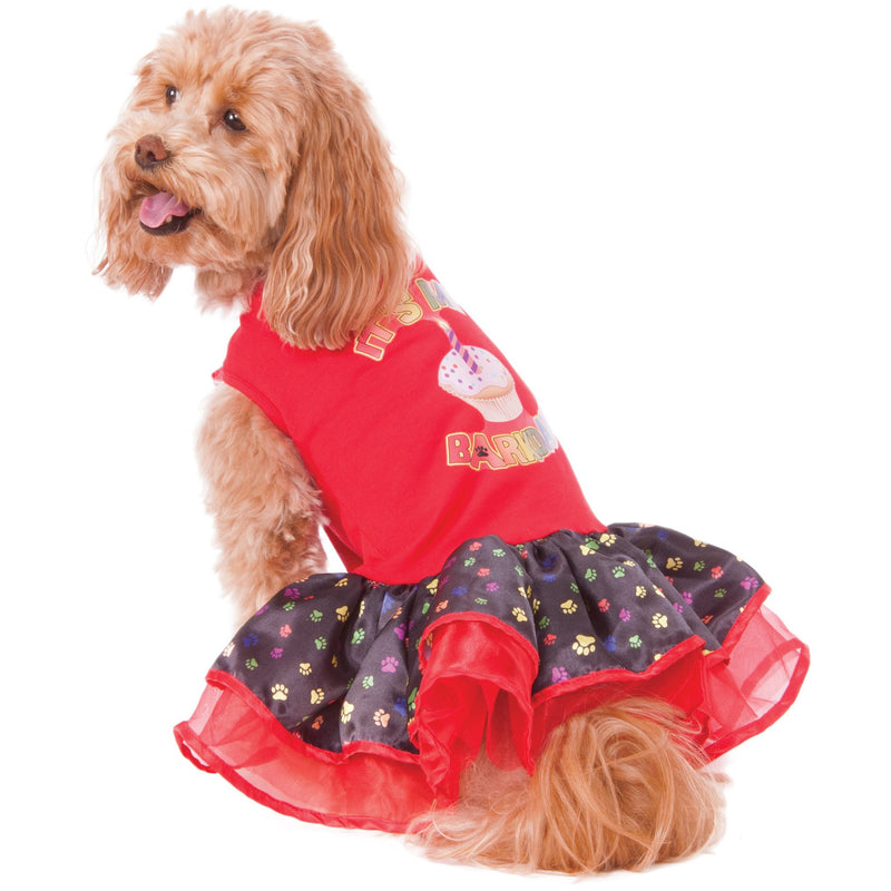 Birthday Girl Pet Dress - kostumed
