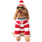 Where's Waldo Pet Costume - kostumed