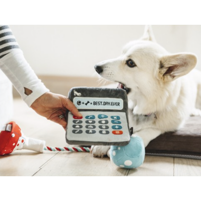 Smarty Pants Calculator Dog Toy - kostumed