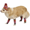 Pet Hat & Leg Warmers- Pink & Orange - kostumed