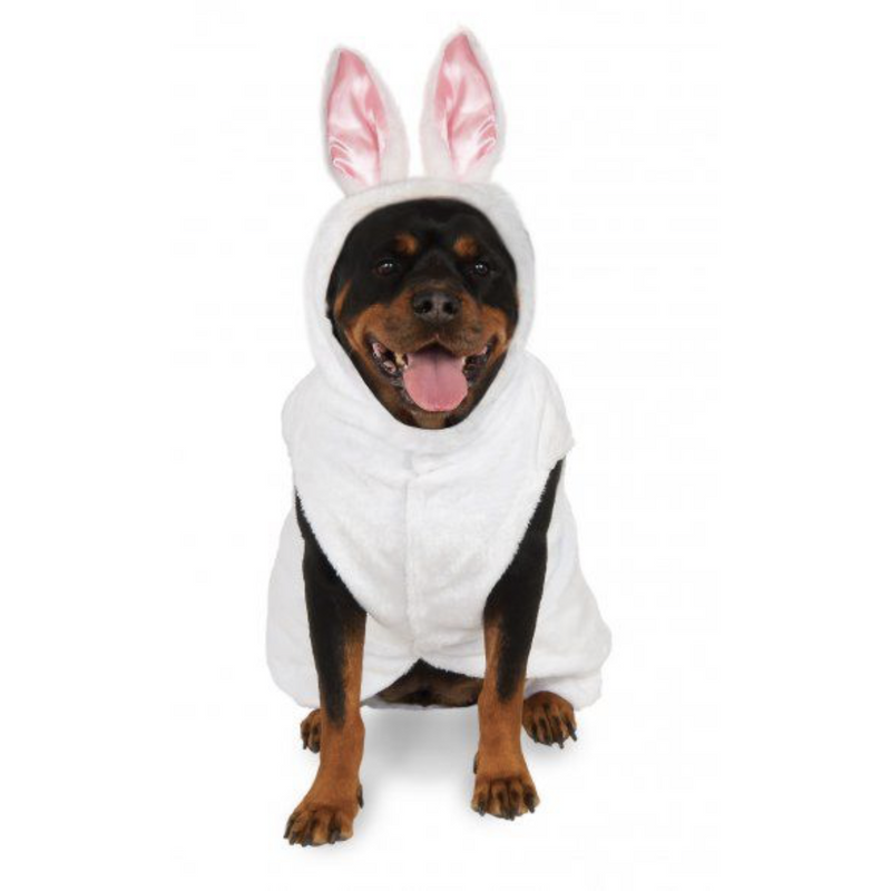 Bunny Pet Costume - kostumed