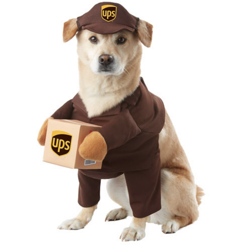 UPS Driver Pet Costume - kostumed