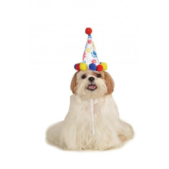 Birthday Boy Pet Hat - kostumed