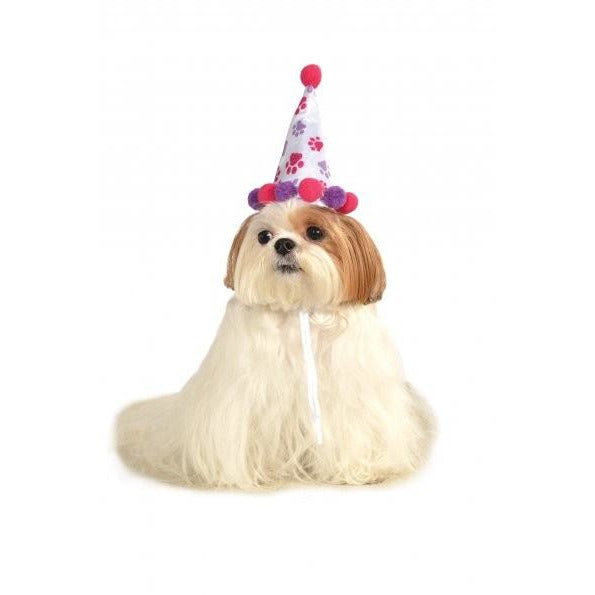 Birthday Girl Pet Hat - kostumed