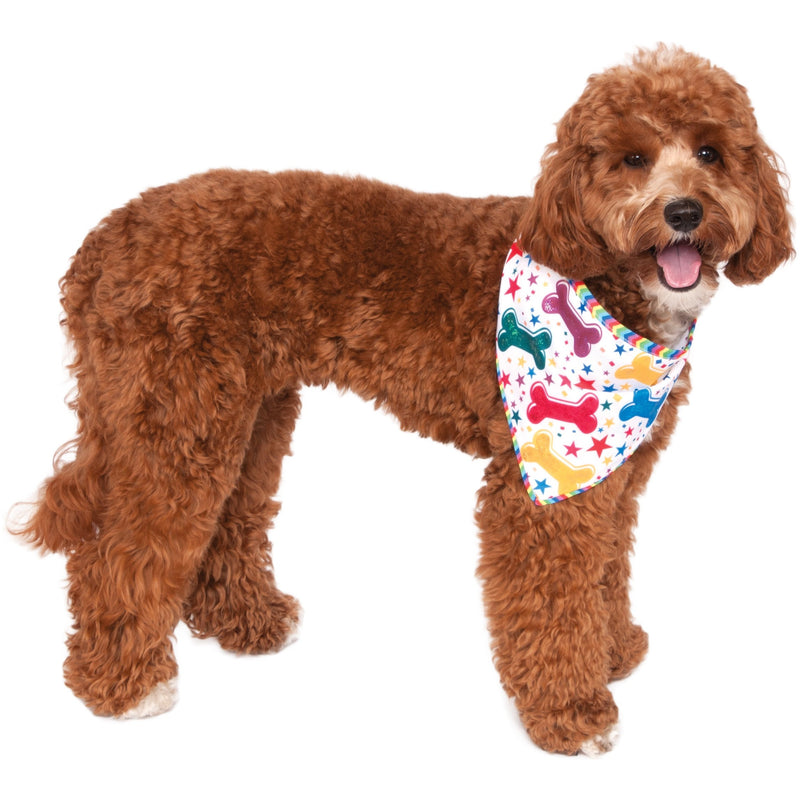Birthday Reversible Pet Bandana - kostumed