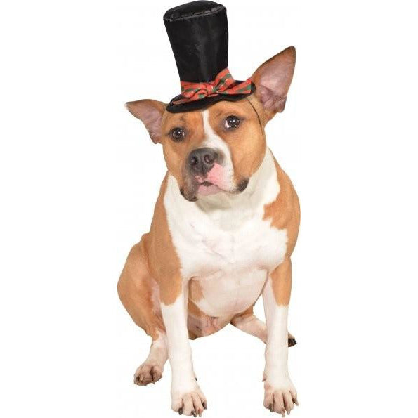 Christmas Caroler Pet Hat - kostumed