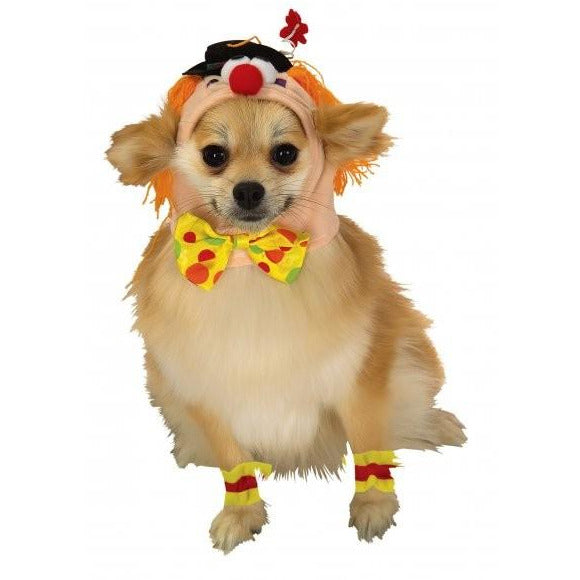 Clown Headpiece with Cuffs Pet Costume - kostumed