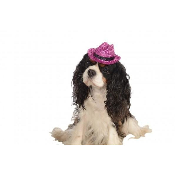 Cowboy Pink Glitter Pet Hat - kostumed
