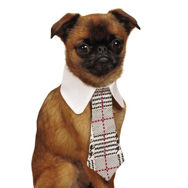 Plaid Pattern Pet Necktie - kostumed