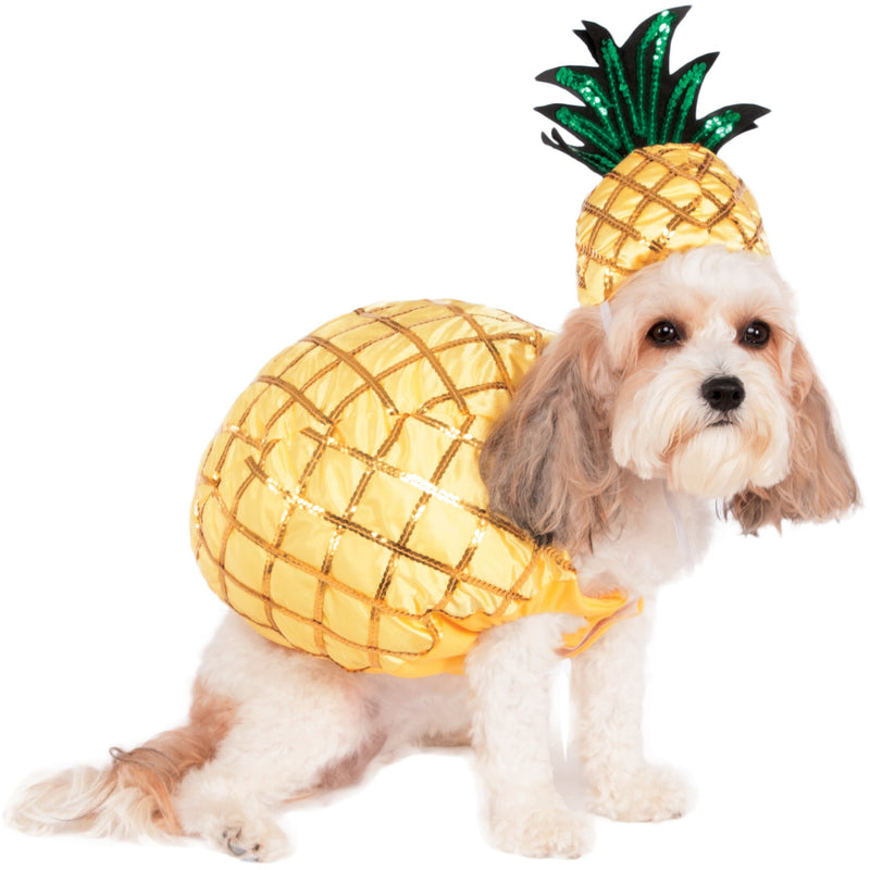 Pineapple Pet Costume - kostumed
