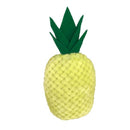 Pineapple Dog Toy - kostumed