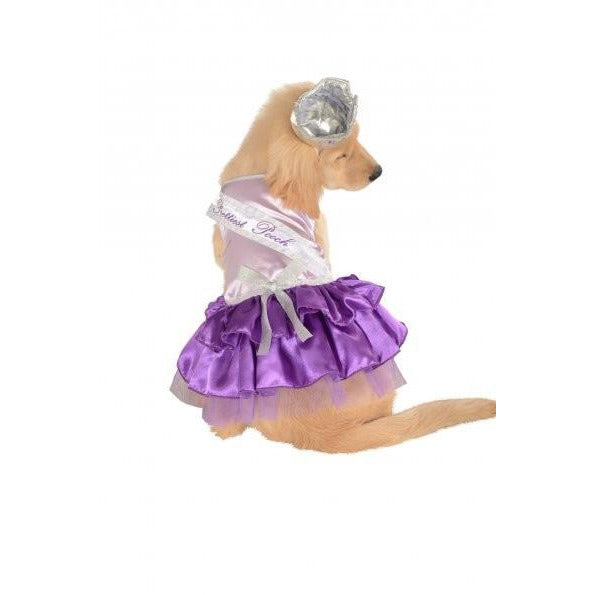 Prettiest Pooch Pet Costume - kostumed