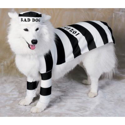 Prisoner Pet Costume - kostumed