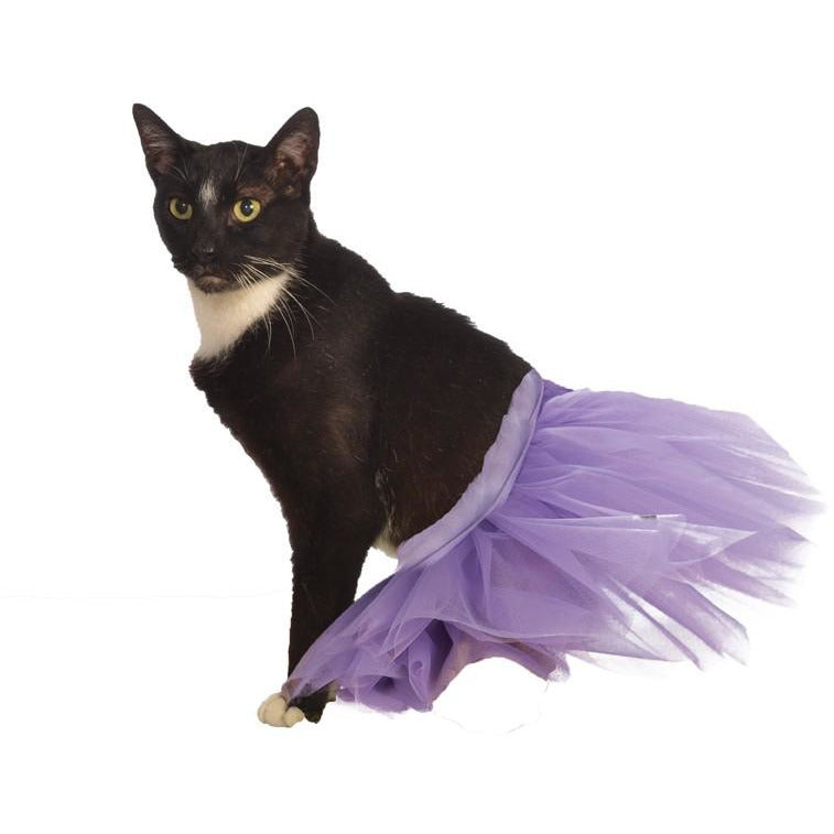 Purple Cat Tutu - kostumed