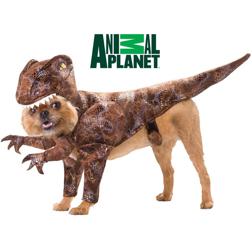 Raptor Pet Costume - kostumed