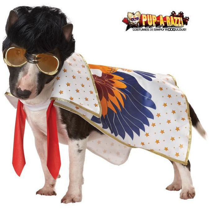 Rock n' Roll Pet Costume - kostumed