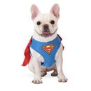 Superman Dog Harness - kostumed