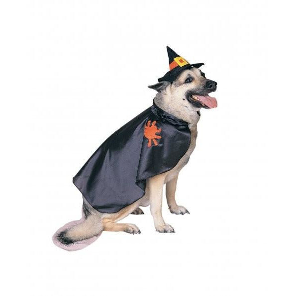Witch Pet Costume - kostumed