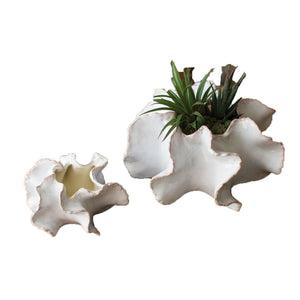 Organic Ceramic Planters - Set of 2
