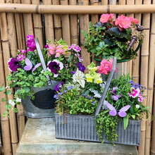 Load image into Gallery viewer, Garden Inspired Baskets