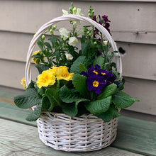 Load image into Gallery viewer, Easter Blooming Baskets