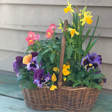 Load image into Gallery viewer, Blooming Baskets