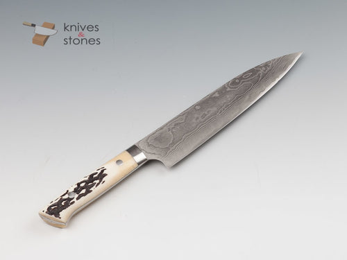 Takeshi Saji Damascus VG10 Gyuto 210mm Stag Handle
