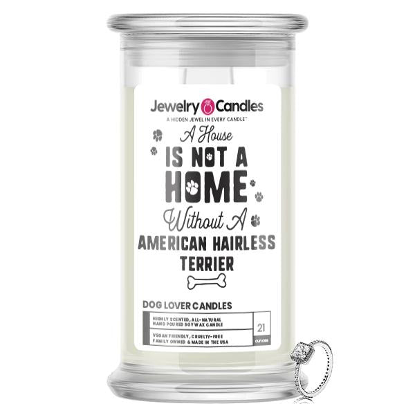 A house is not a home without a American Hairless Terrier Dog Jewelry Candle